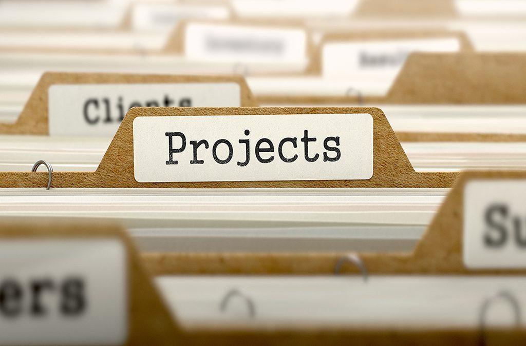 Project Portfolio Management and Optimisation